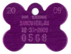 Dog License Example