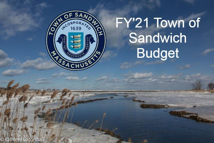 FY Cover image beach and town seal