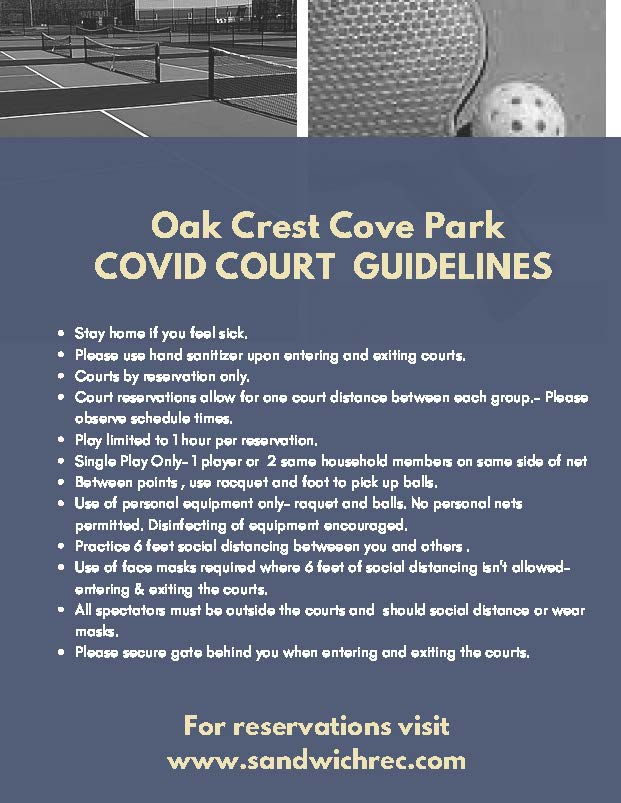 COVID COURTS guidelines