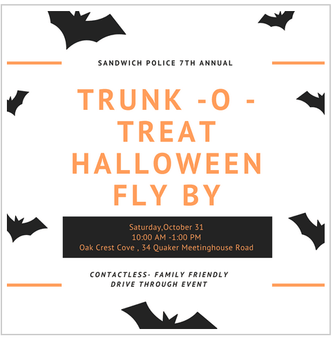 Halloween bats flying graphic with text